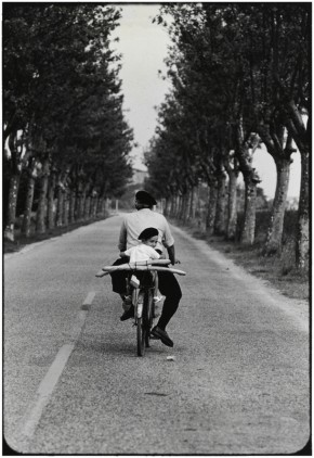 Provence,-France.1955